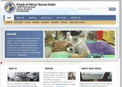Friends of Felines Rescue Center